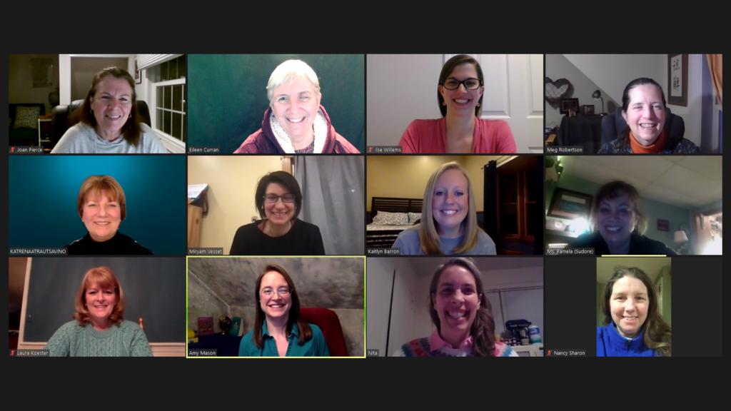 A zoom screenshot of the AMESVI board members